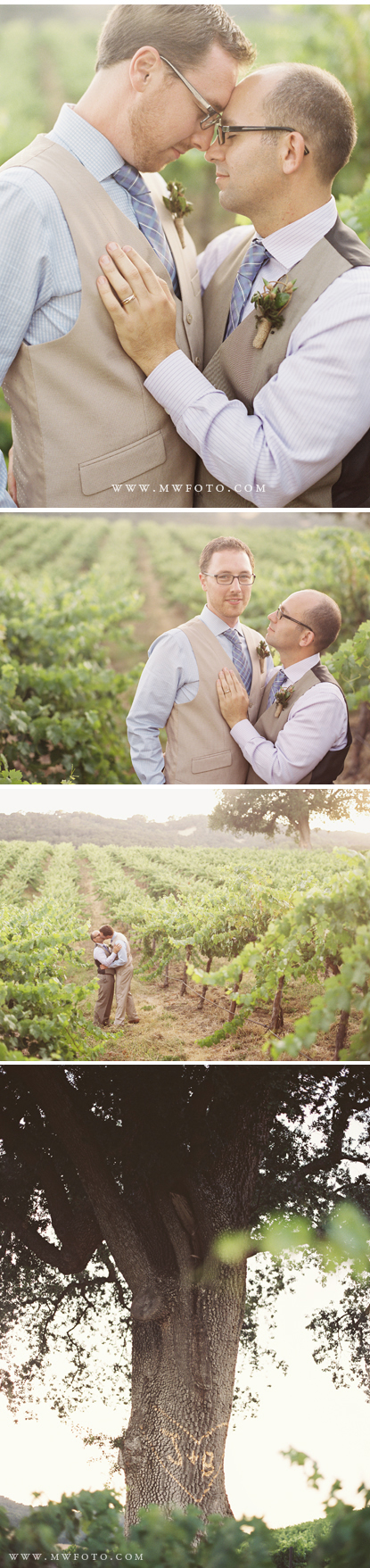 Hammersky Vineyards Gay Wedding in Paso Robles